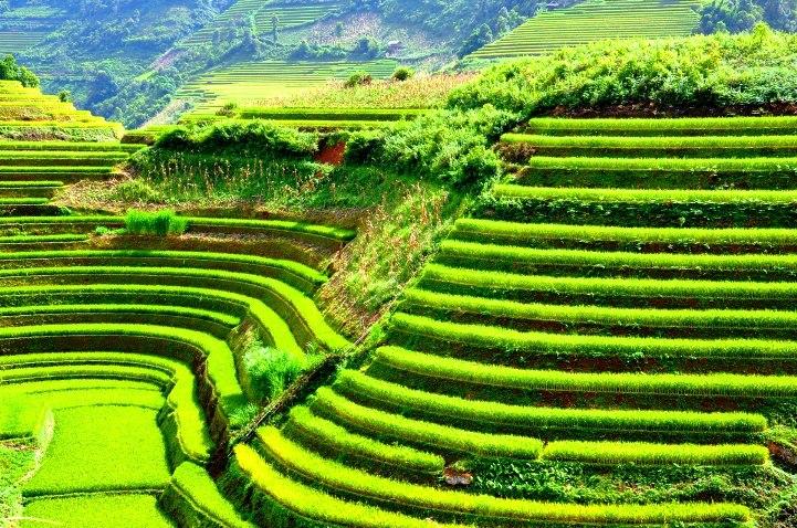 Vietnam Photography Adventures 14 days